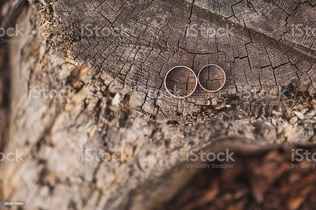 wedding rings on an old wooden stump in the forest stock photo