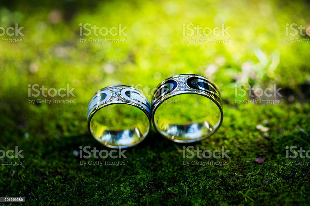 Anillos de boda en moss foto de stock libre de derechos