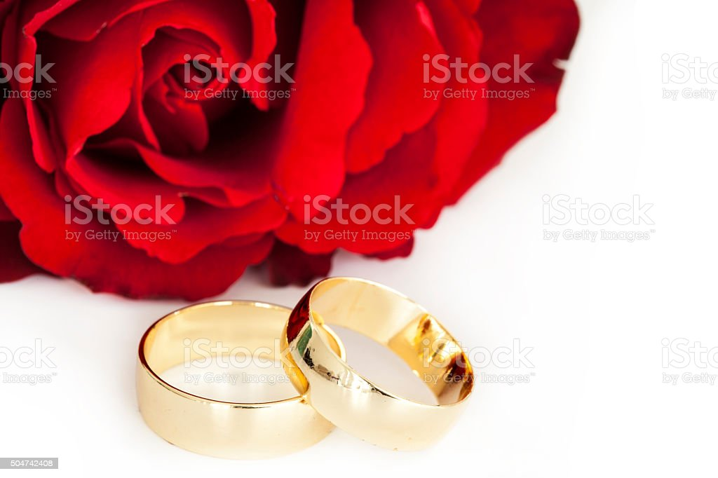 Wedding rings with red rose stock photo