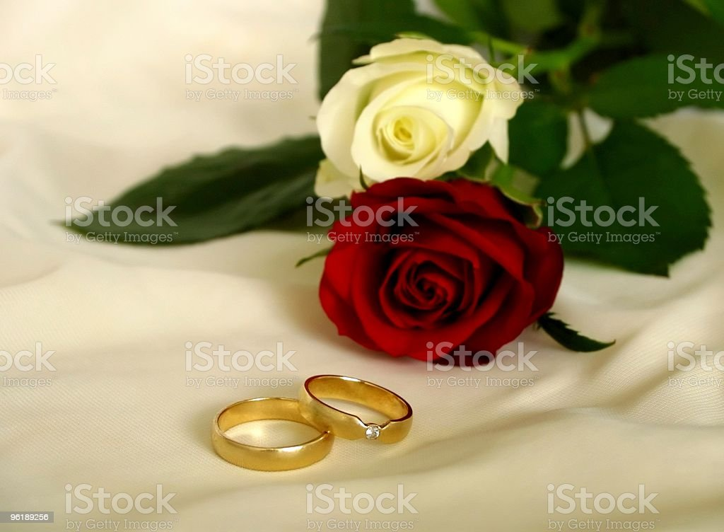 Wedding rings with roses stock photo