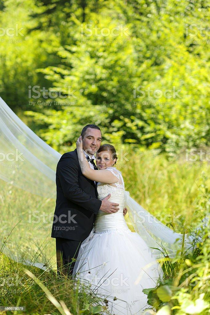 wedding shoot royalty-free stock photo