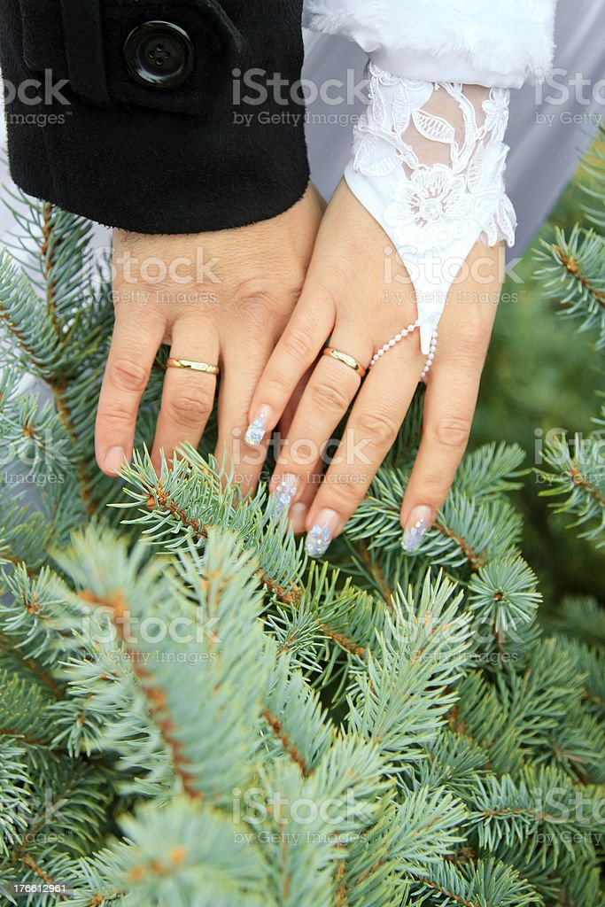 wedding theme, holding hands royalty-free stock photo