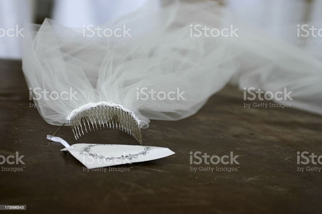 Wedding Veil royalty-free stock photo