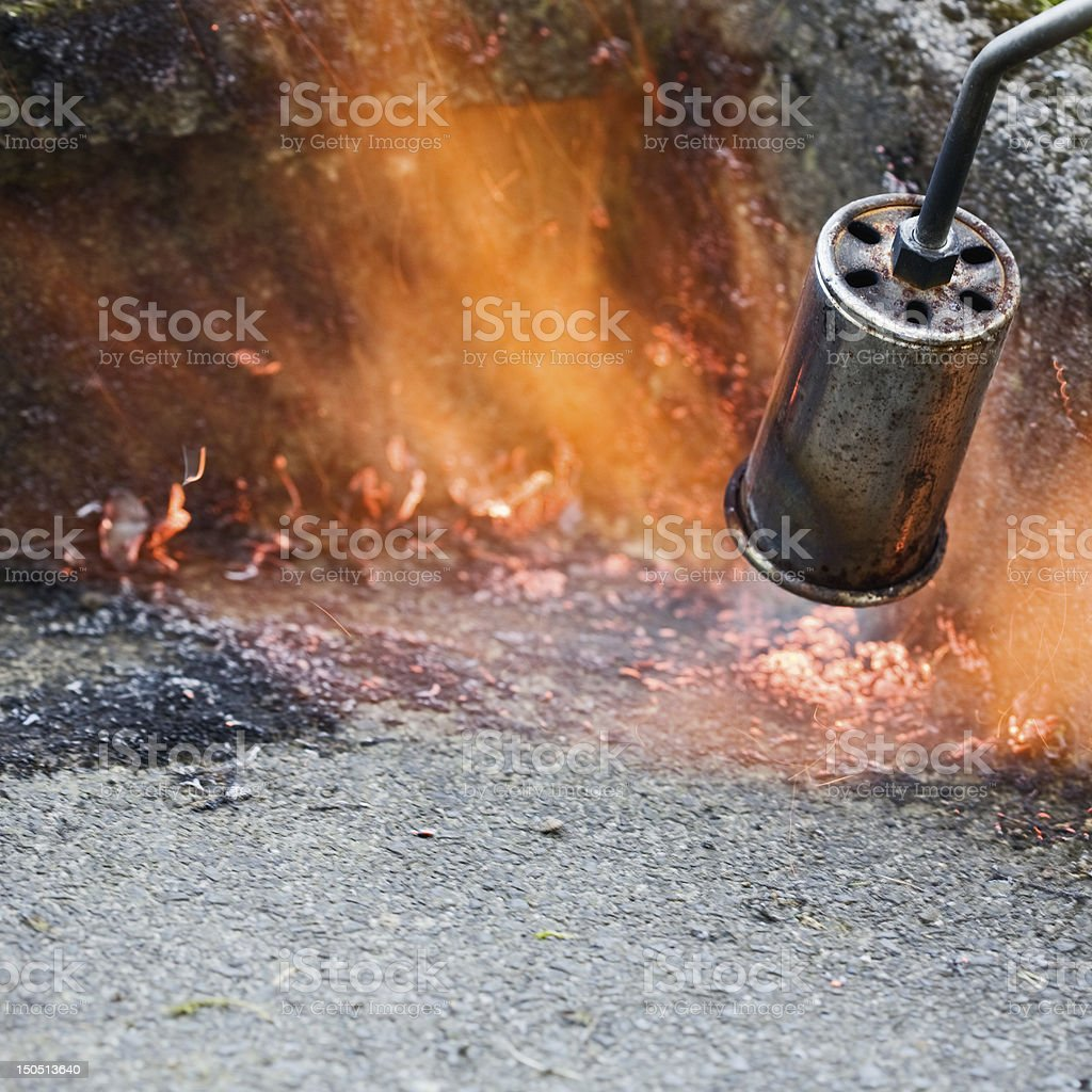 Weed Burning stock photo