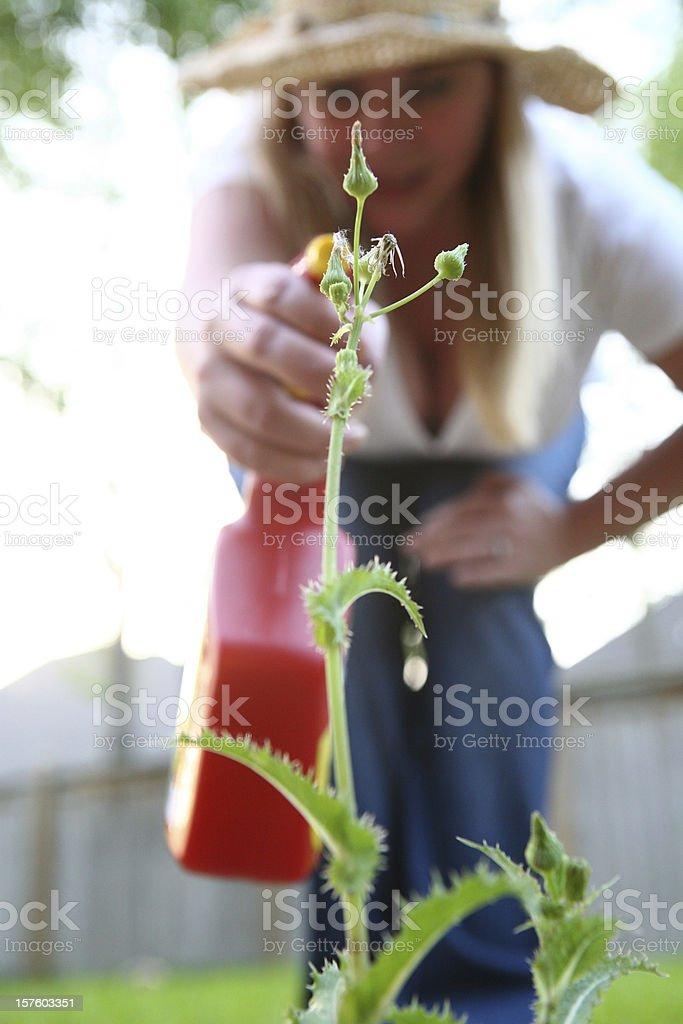 Weed Killer stock photo