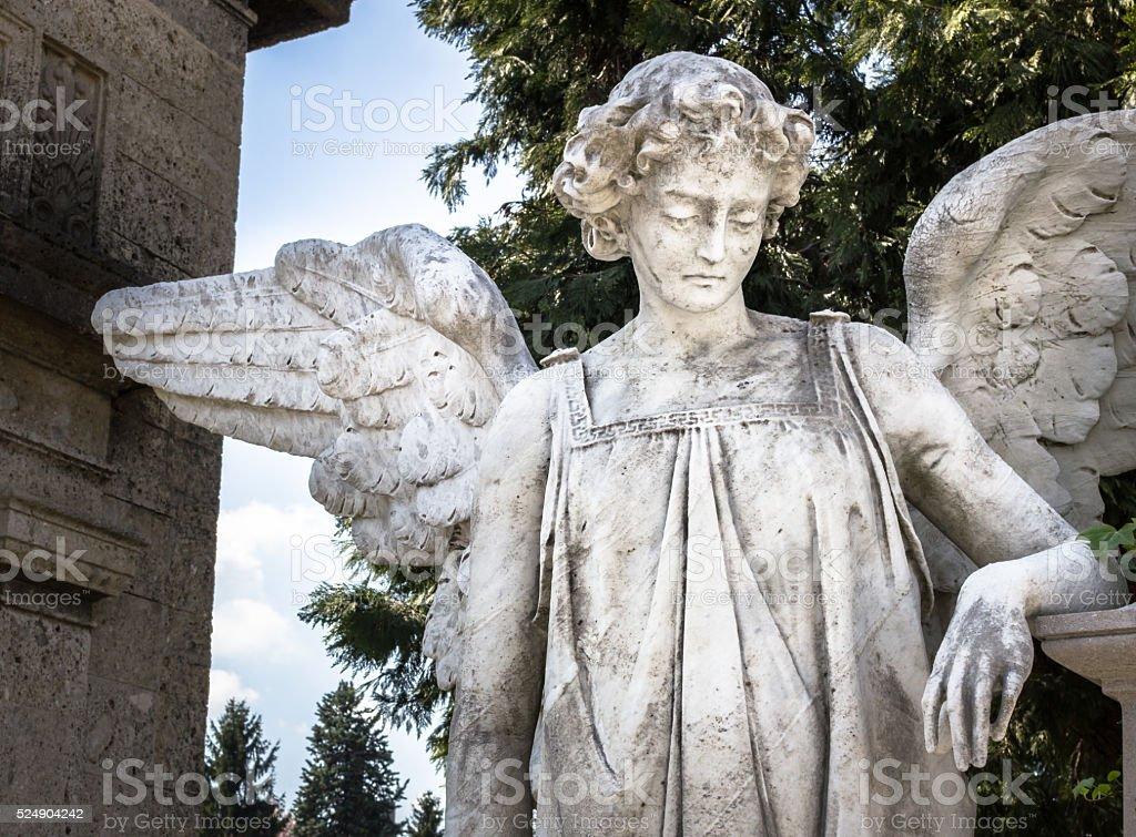 Weeping angel stock photo