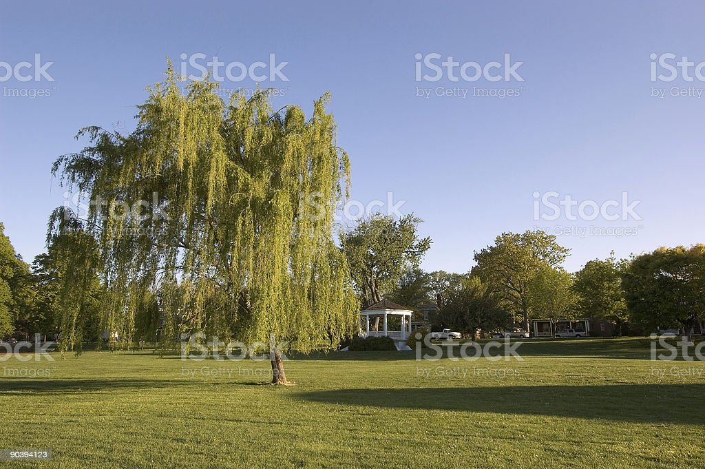 Weeping Willow and Gazebo royalty-free stock photo