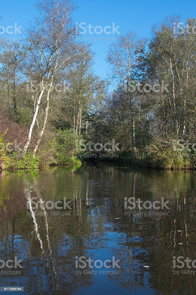 Weerribben-Wieden nature reserve during a beautiful fall day stock photo