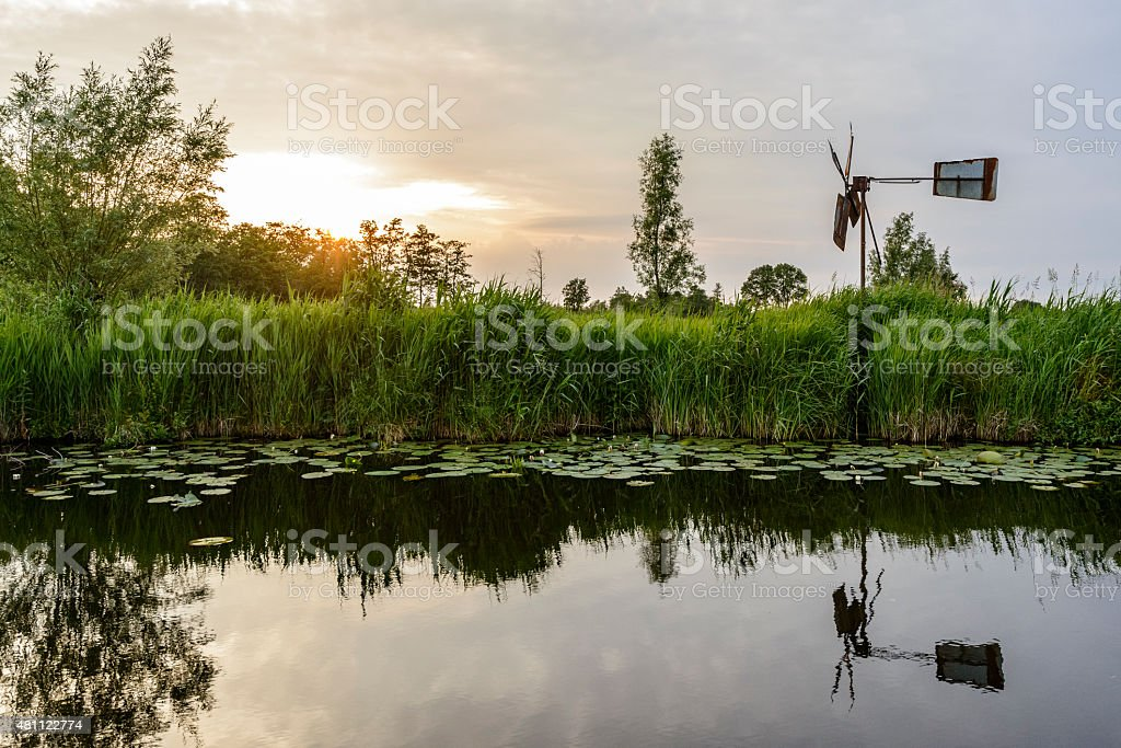 Weerribben-Wieden nature reserve with a typical windmill stock photo