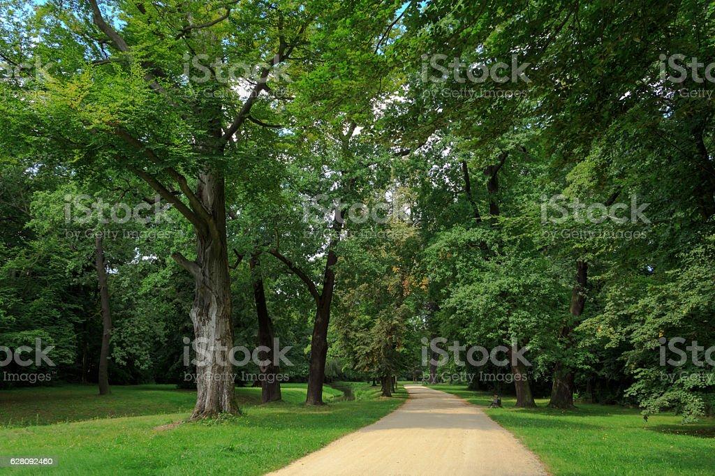 Wege in den Park stock photo