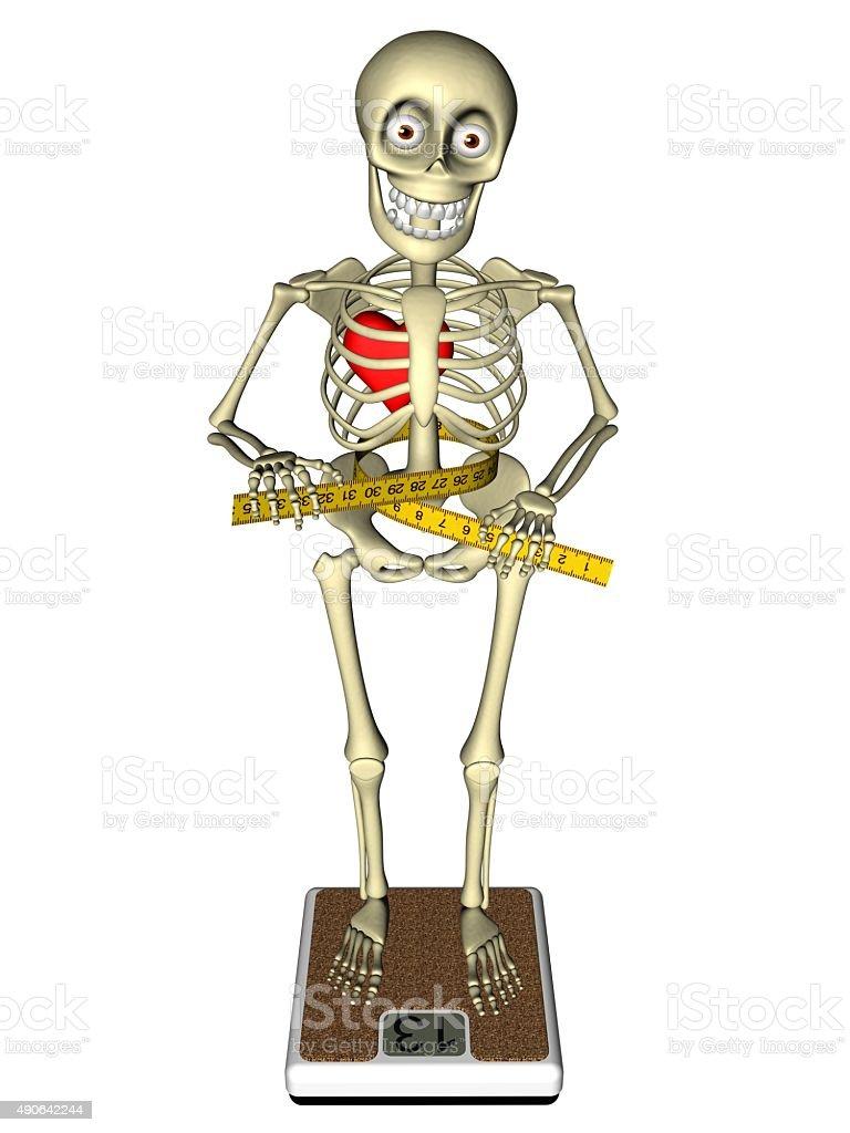 weight of human skeleton – tribeunity, Skeleton