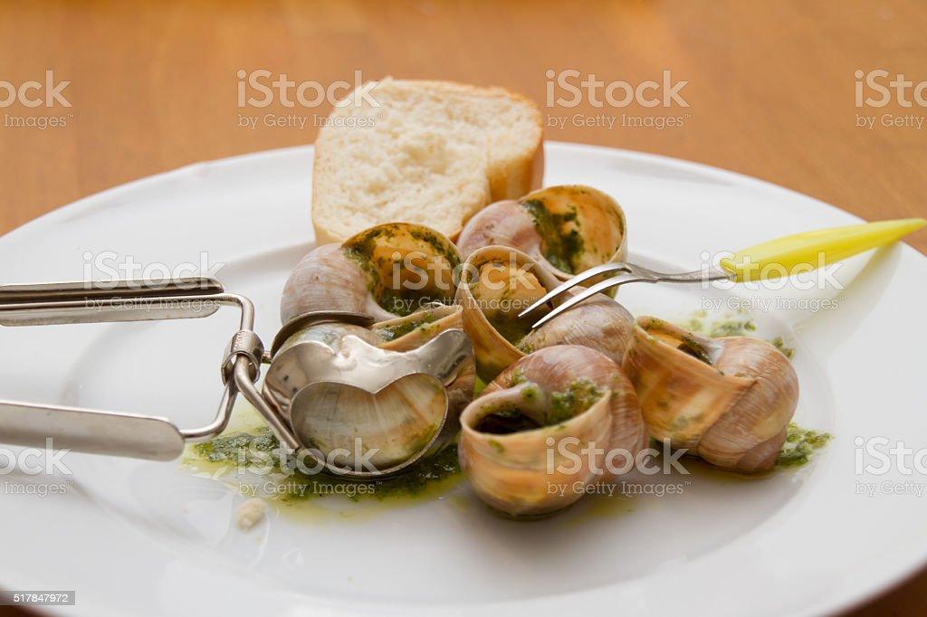 Weinbergschnecken mit Kräuterbutter und Baguette stock photo