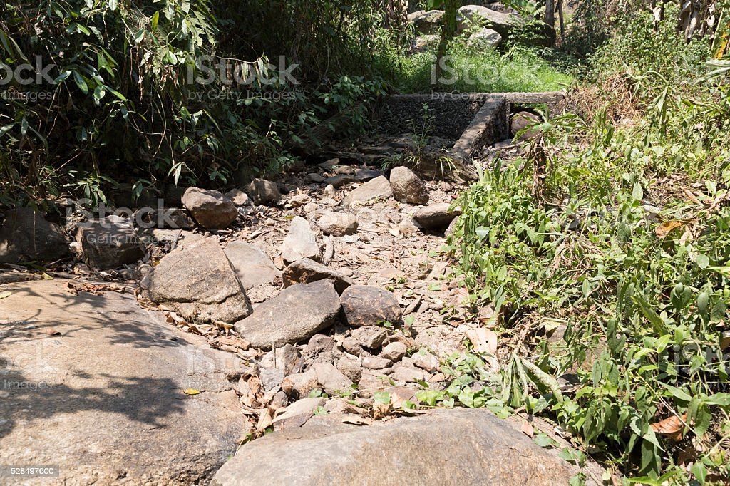 weir in forest in drought stock photo