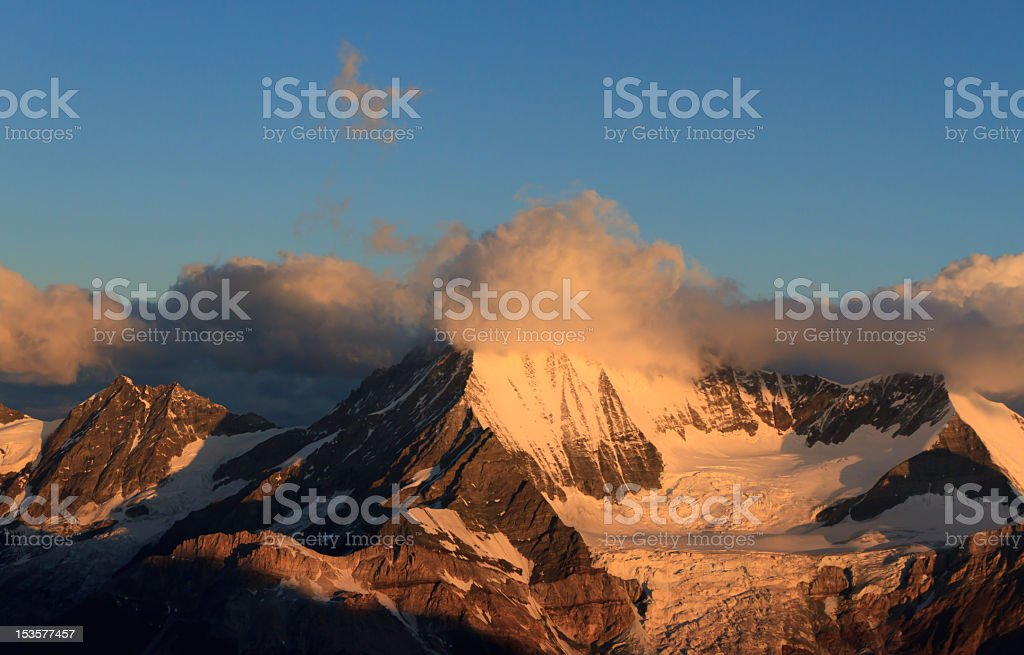 Weishorn royalty-free stock photo