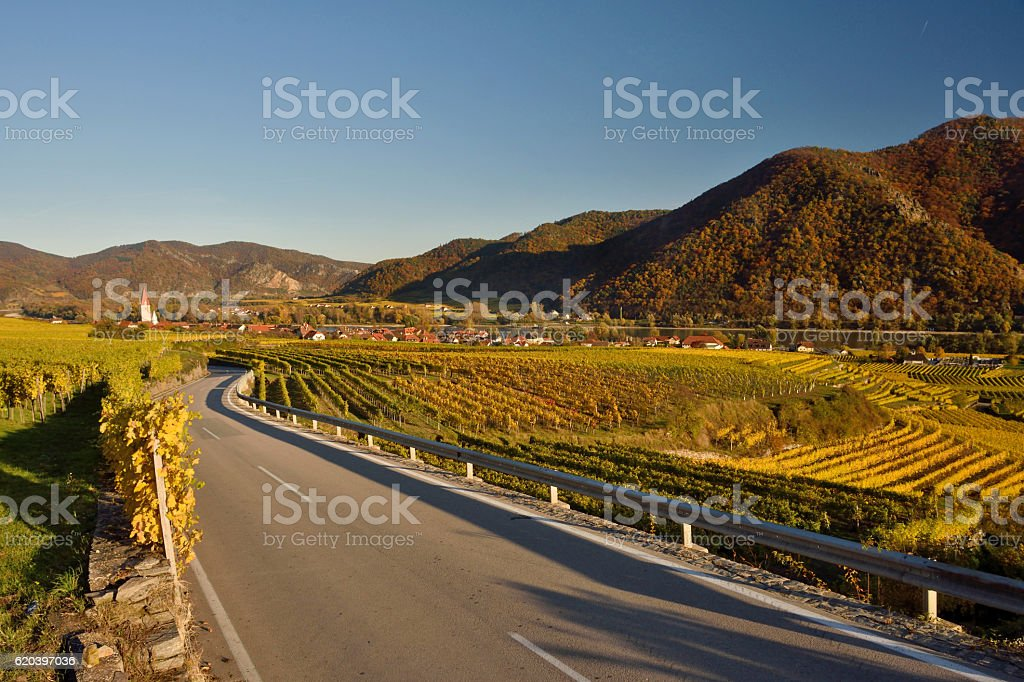 Weissenkirchen at river Danube in fall stock photo