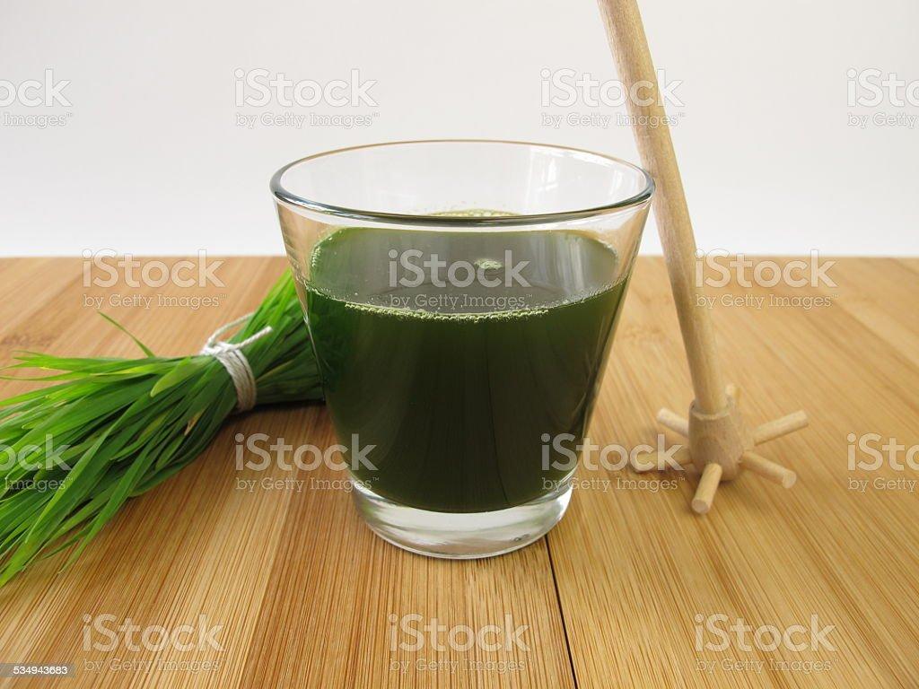 Weizengrassaft stock photo