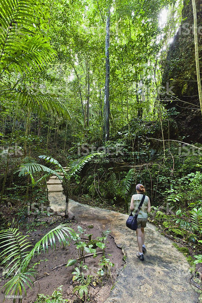 Welchman Hall Gully, Barbados stock photo