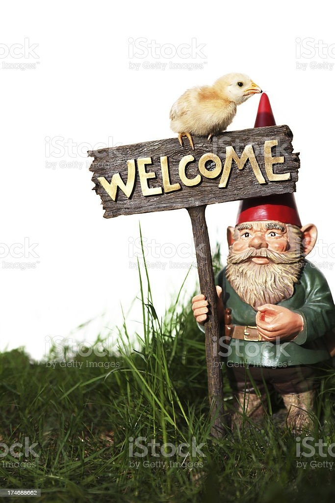 Welcome gnome and chick stock photo