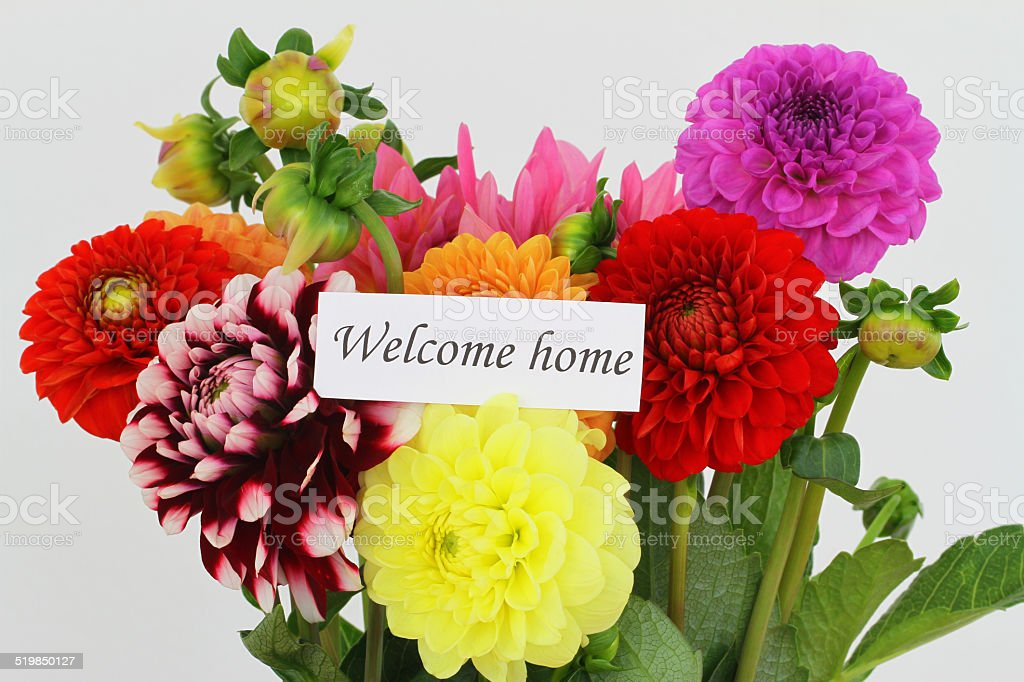 Welcome home card with colorful dahlia flowers stock photo
