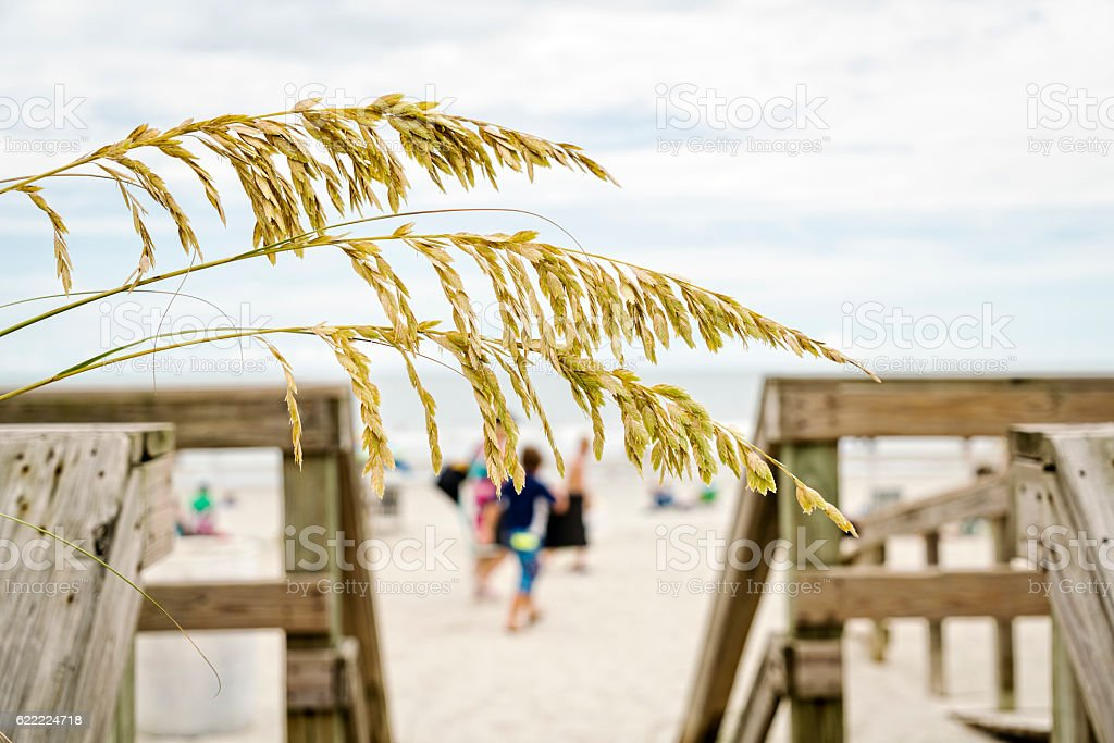 Welcome to the Beach stock photo