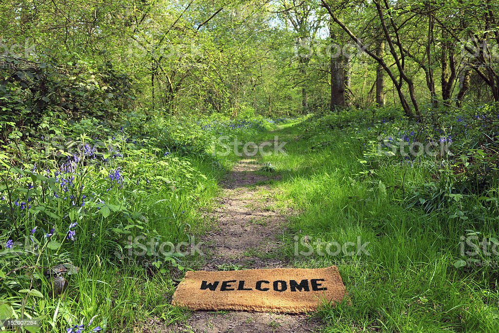 Welcome to the spring woodland horizontal royalty-free stock photo