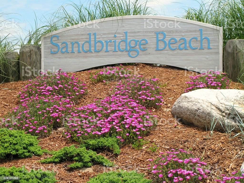 Welcoming Sandbridge Beach Sign in Flowerbed, Virginia stock photo