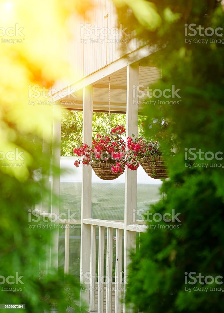 Well decoration petunias in pots stock photo