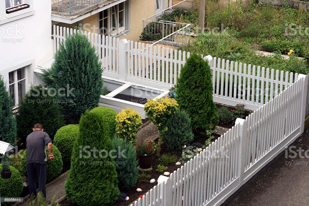 well kept and unkempt garden stock photo