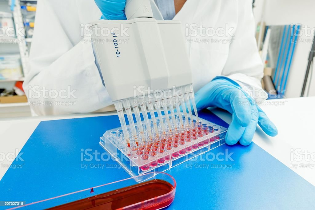 96 well plate for PCR processing, microbiological laboratory stock photo