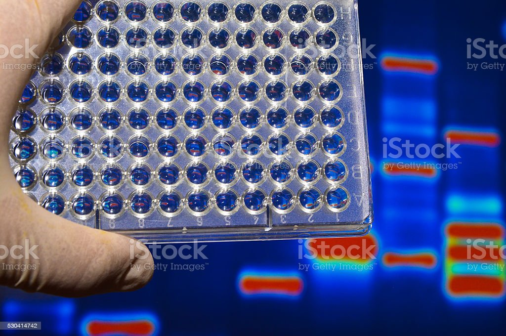 Well plate in the lab. stock photo