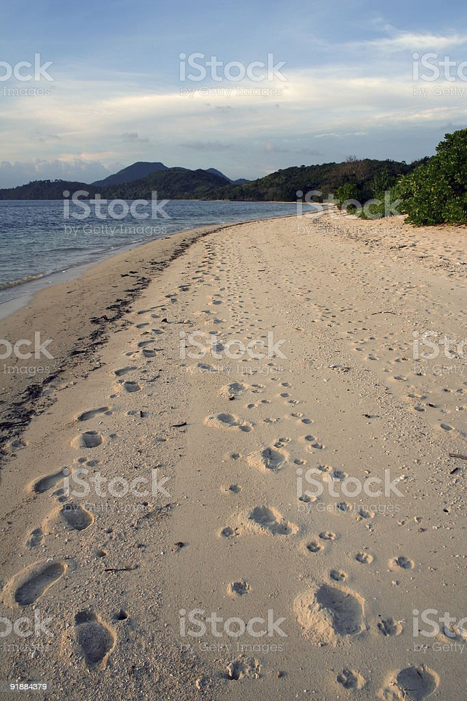 well trodden busuanga beach royalty-free stock photo