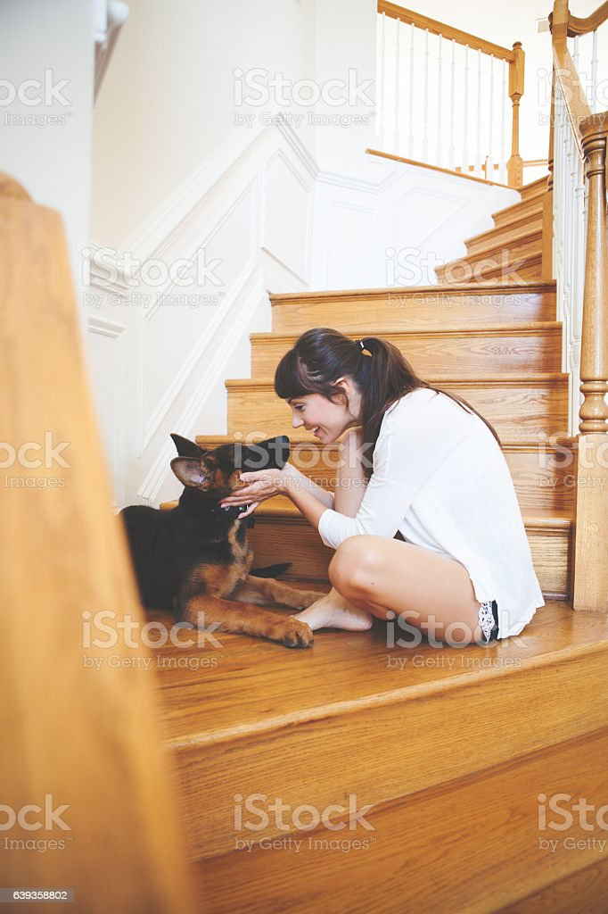 Wellcome to your new home puppy stock photo
