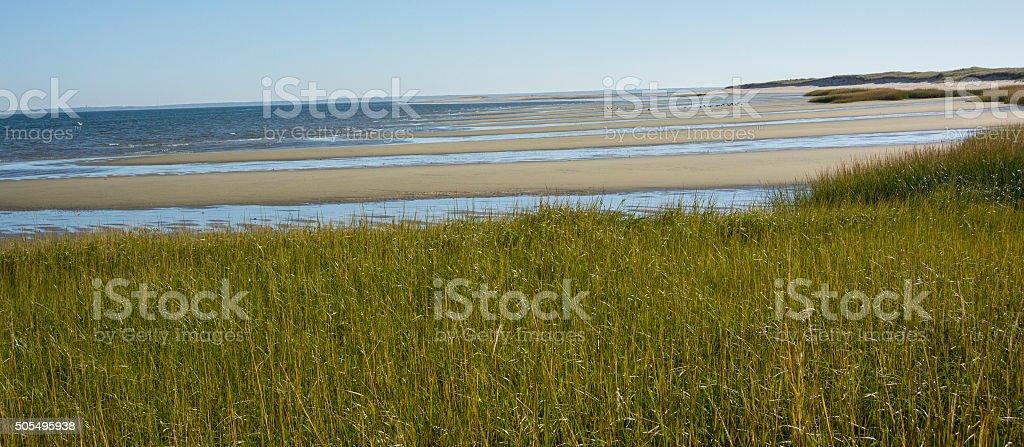 Wellfleet Harbor at Low Tide stock photo