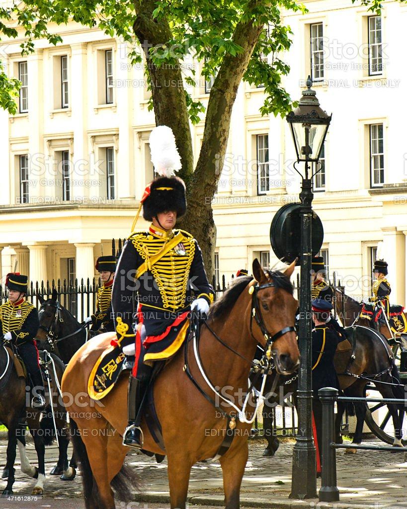 Wellington Guard royalty-free stock photo