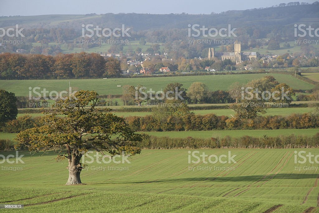 Wells Cathedral in the Autumn royalty-free stock photo
