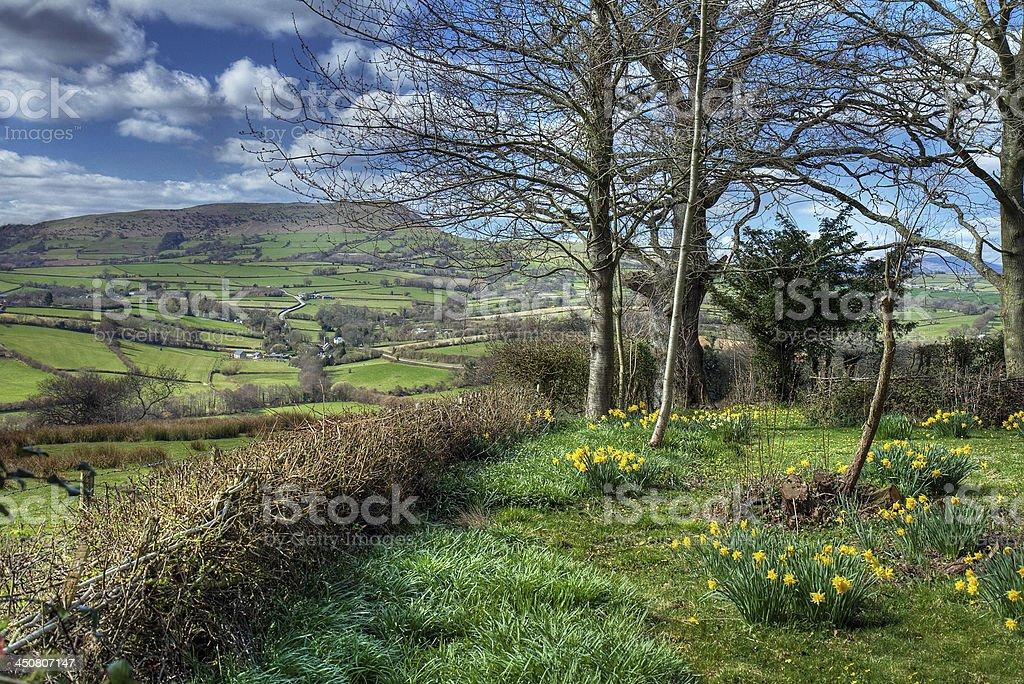 Welsh countryside garden stock photo