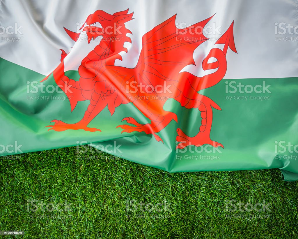 Welsh flag on green grass stock photo