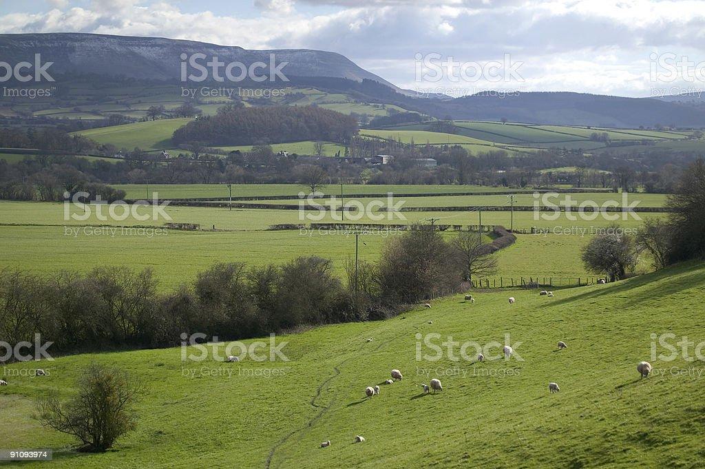 Welsh Landscape royalty-free stock photo