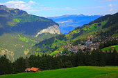 Wengen Alpine village idyllic Landscape: woodland and meadows, Swiss Alps