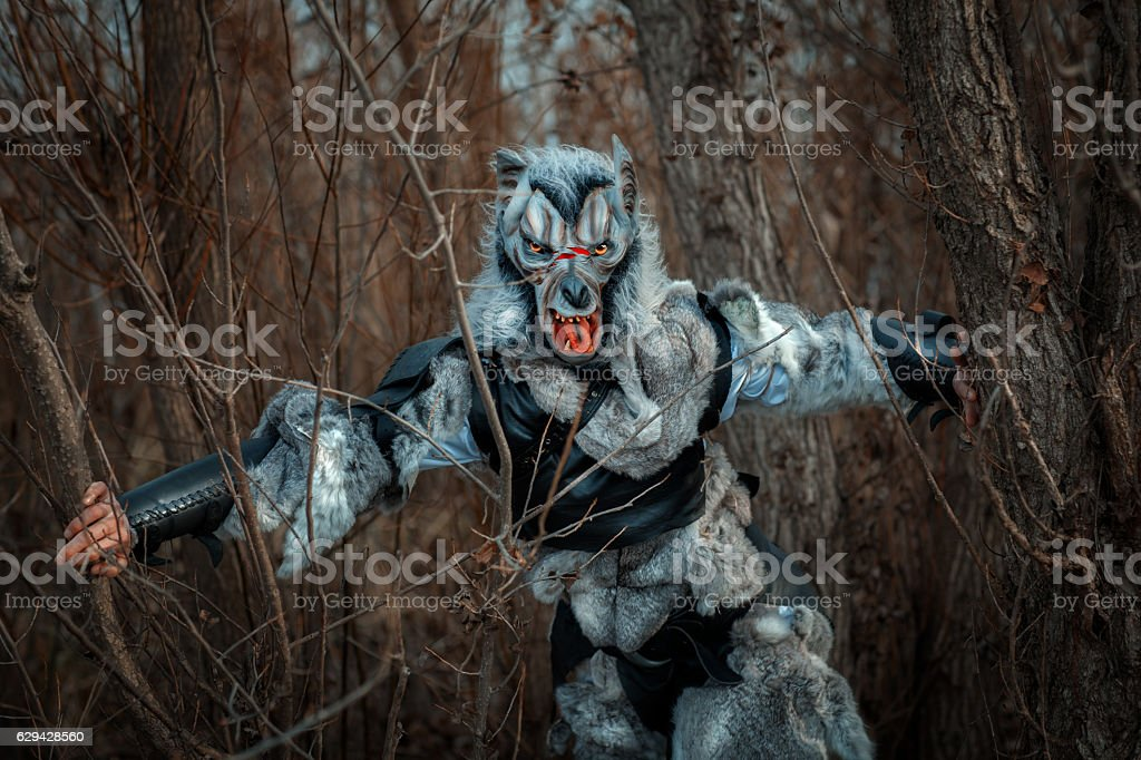 Werewolf in the forest. stock photo