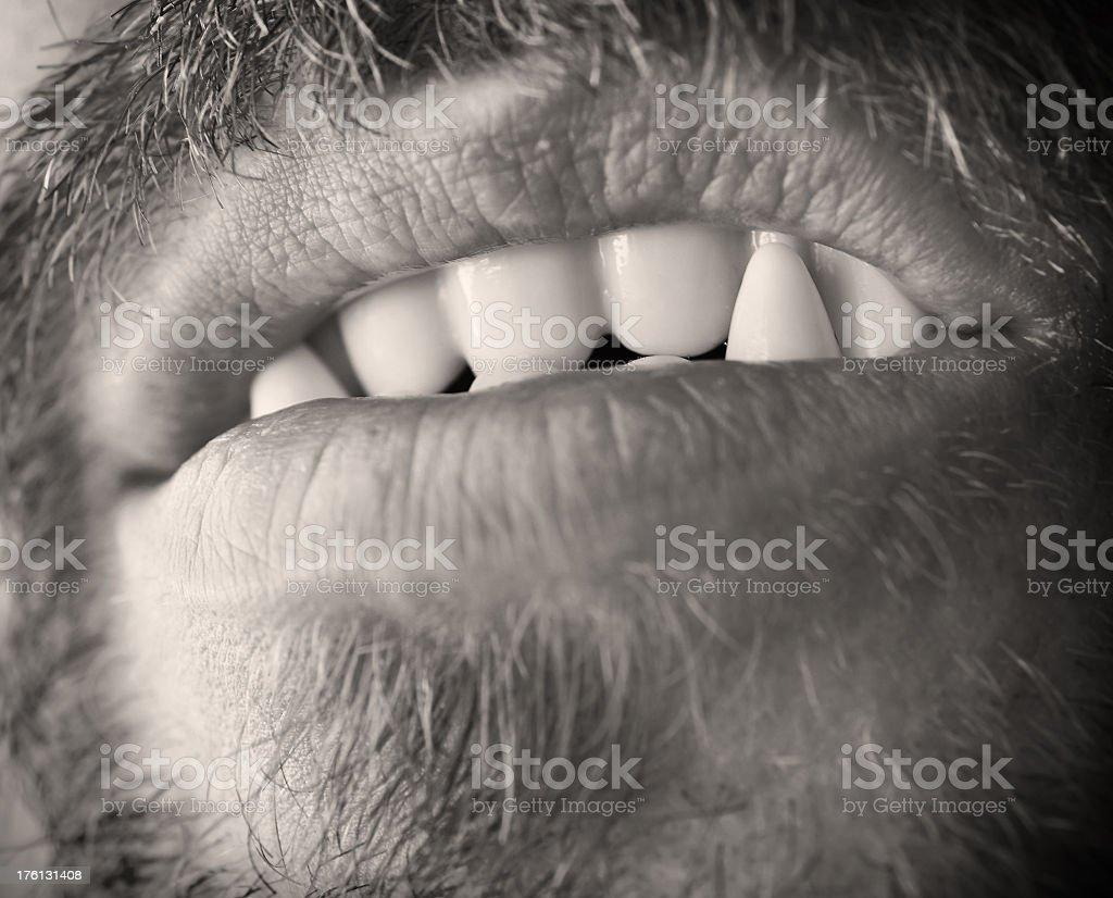Werewolf teeth royalty-free stock photo