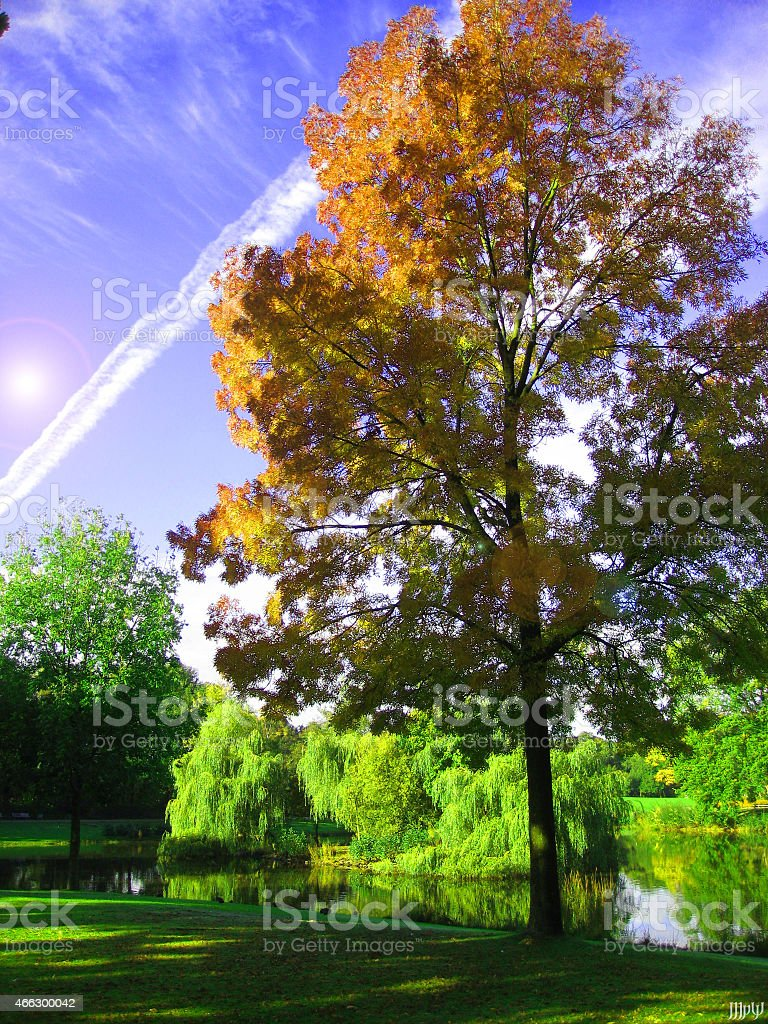 Wesselerbrinkpark in Enschede The Netherlands stock photo