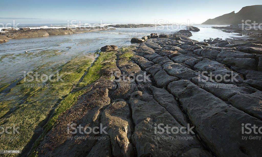 West Coast Beach, Collingwood, New Zealand. royalty-free stock photo