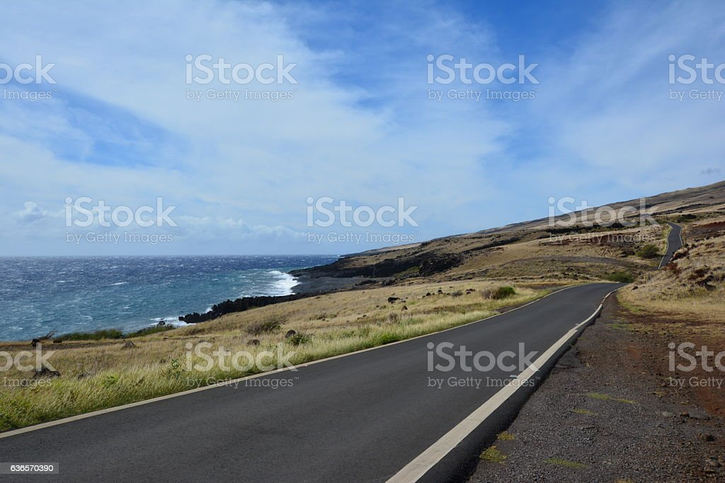 West Coast of Maui on Forbidden Road stock photo