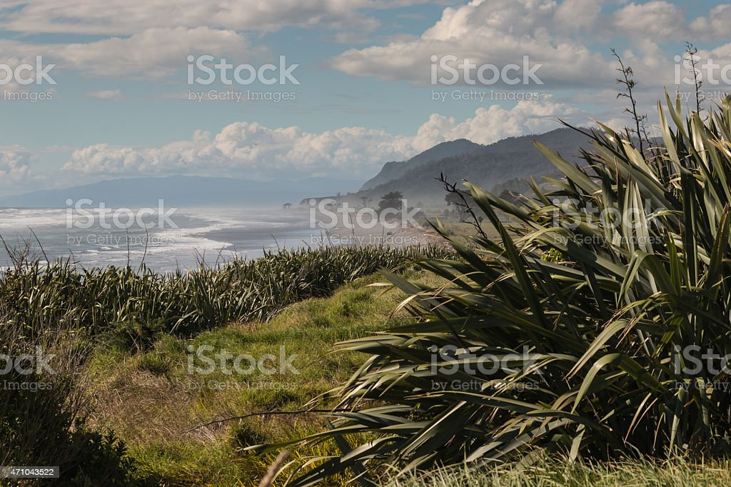 West Coast of South Island in New Zealand stock photo