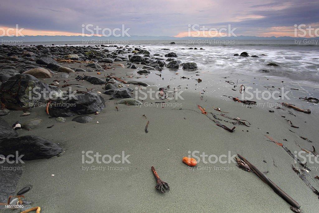 West Coast royalty-free stock photo