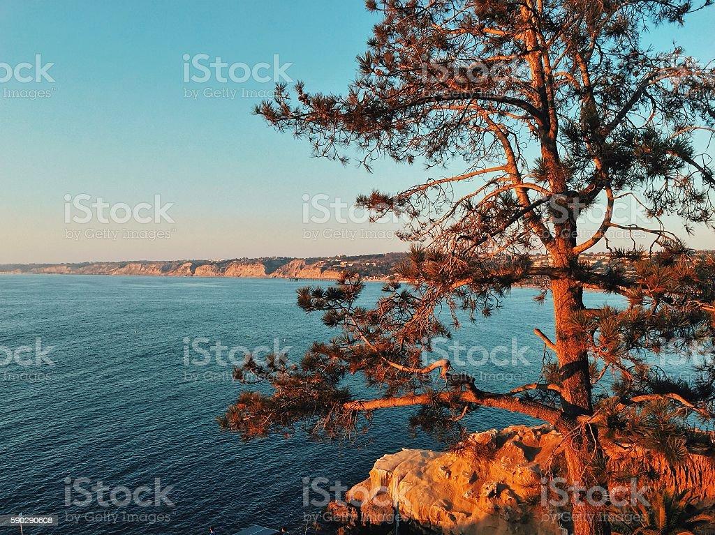 West coast the best coast. stock photo