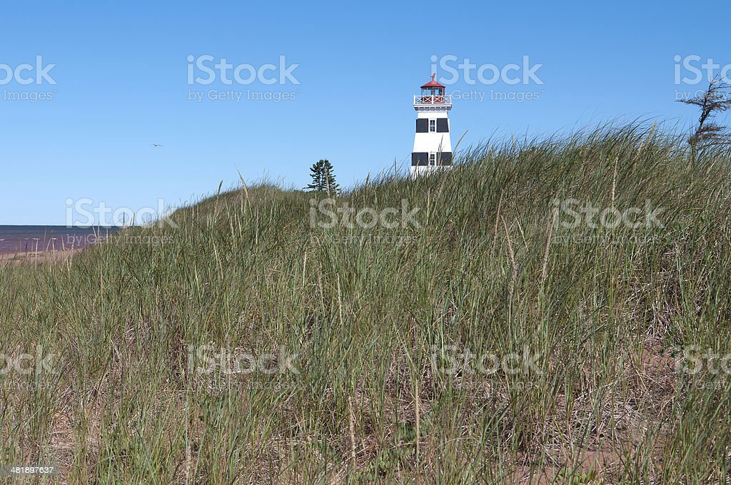 West Point Lighthouse by Grass Dunes royalty-free stock photo