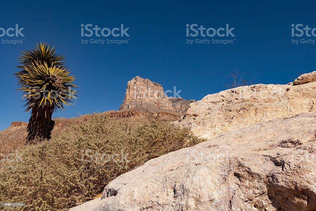 West Texas Mountain and Rocks Tree stock photo