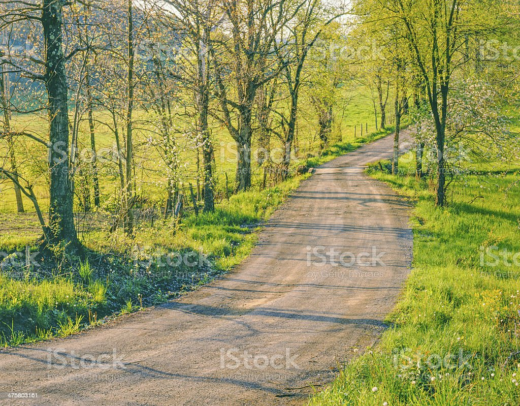 West Virginia country road stock photo
